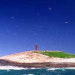 ilha-escalvada