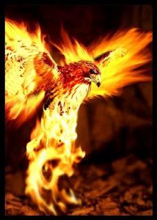 lenda-passaro-de-fogo